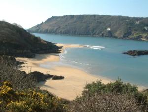 salcombe-cove-and-blackstone-rocks-kingsbury-estuary-robin-lucas